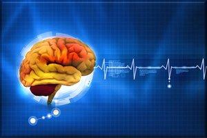 Conduzione dei nervi